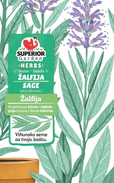 ilustracija zalfije i cvetova u saksiji na prednjoj strani kesice
