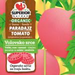 ilustracija organskog paradajza volovsko srce na biljci sa zlatnom pozadinom na prednjoj strani kesice