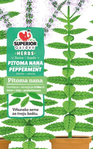 superior garden herbs seme pitoma nana link ka proizvodu