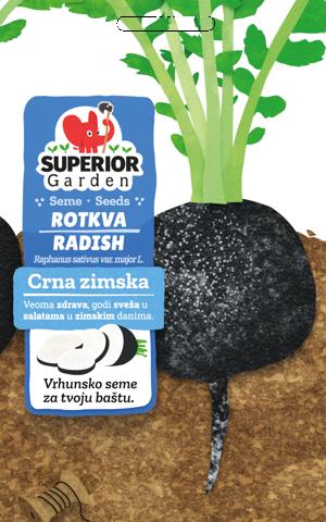superior garden seeds radish crna zimska link to product